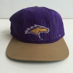 vintage st. louis stallions nfl starter snapback hat