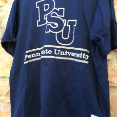 vintage PSU Nittany Lions 90's the game t shirt
