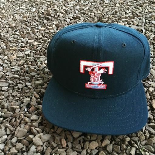 Toledo Mud Hens international league new era snapback hat
