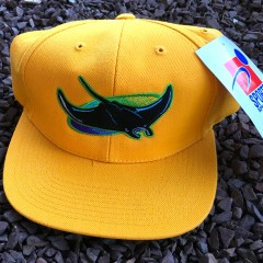 Vintage Tampa Bay Devil Rays Sports Specialties MLB Snapback hat