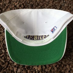 90's the game Tampa Bay Devil Rays snapback hat