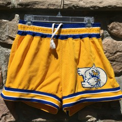 Vintage 70's University of Delaware blue hens NCAA game worn shorts