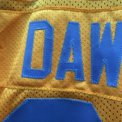 authentic Eagles Dawkins yellow jersey