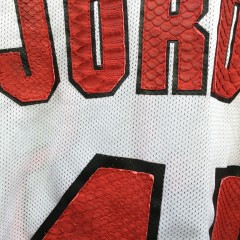 Snake skin on vintage Champion NBA michael jordan jersey