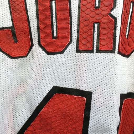 Snake skin on vintage Champion NBA michael jordan jersey