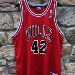 vintage 1999 Elton Brand Chicago Bulls