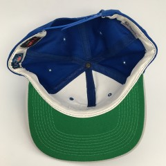 90's Detroit Lions Sports Specialties script NFL snapback hat