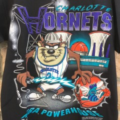 vintage 1995 Charlotte hornets Tasmanian Devil looney tunes nba powerhouse magic johnson nba tee shirt size medium