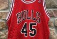 1994-95 Michael Jordan Chicago Bulls #45 Champion NBA jersey size 48 XL
