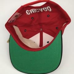 90's Chicago Bulls G Cap vintage NBA snapback hat OG