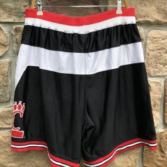 vintage 90's Authentic Cincinnati Bearcats Nike NCAA shorts size 36 large