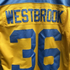 vintage brian westbrook Philadelphia Eagles frank ford yellow jackets Jersey size XL