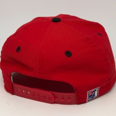 Vintage 90's Chicago bulls the game limited edition nba SnapBack hat