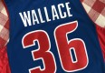 00's Rasheed Wallace Detroit Pistons Nike Authentic NBA Jersey Size 44